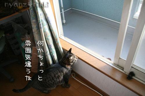 IMG_6297.jpg