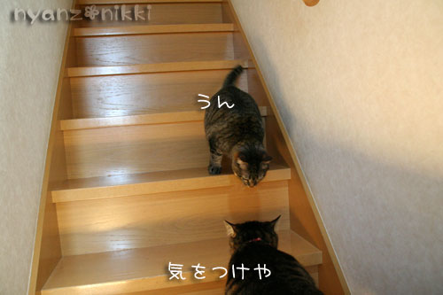 IMG_7218.jpg