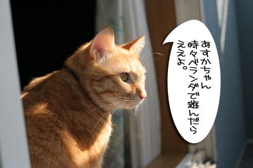 IMG_7234.jpg
