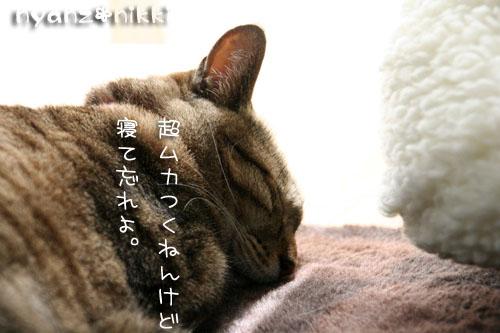 IMG_7274.jpg