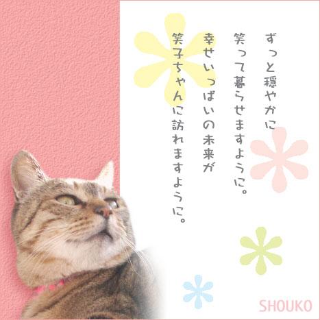 shoukoB.jpg