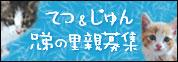 tetu_jun01.jpg