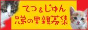 tetu_jun02.jpg