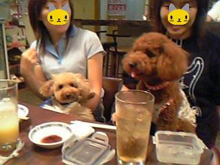 blog20050903c.jpg