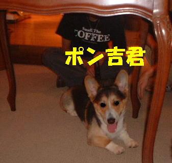 blog20050907n.jpg