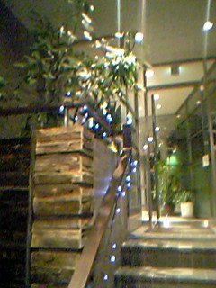 blog20051122b.jpg