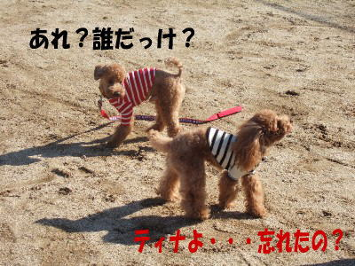 blog20060125a.jpg