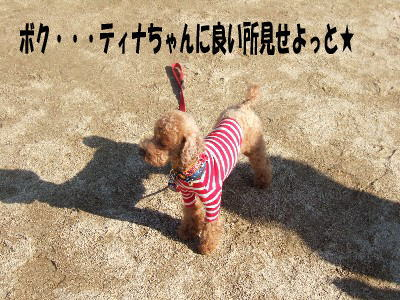 blog20060125d.jpg