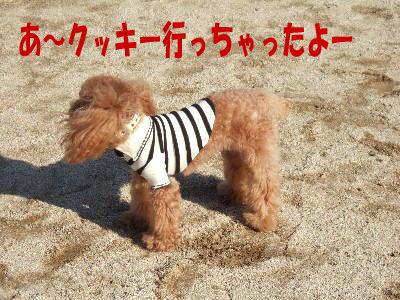 blog20060125e.jpg