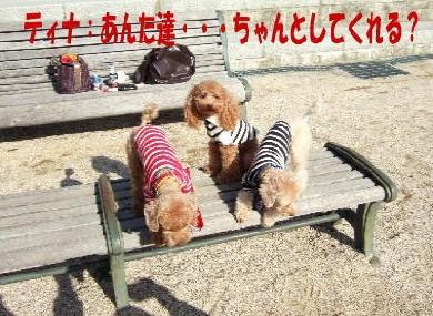 blog20060125g.jpg