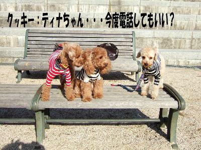 blog20060125h.jpg