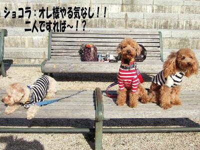 blog20060125j.jpg
