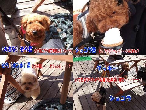 blog20060227a.jpg