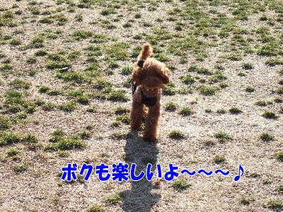 blog20060227f.jpg