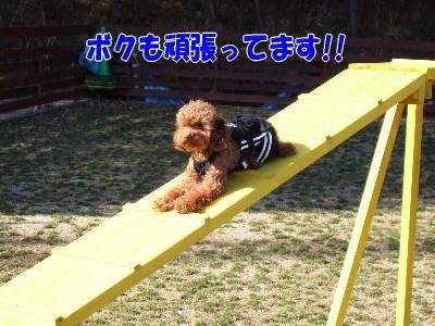 blog20060227i.jpg