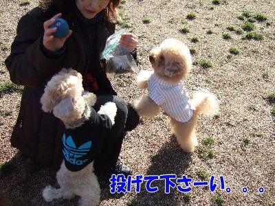 blog20060227j.jpg