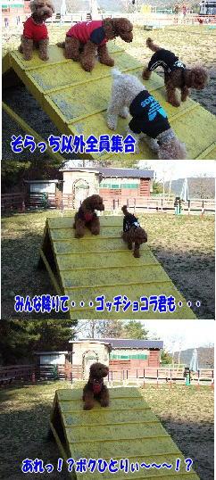 blog20060227m.jpg