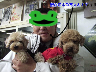 blog20060227q.jpg