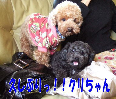 blog20060313a.jpg
