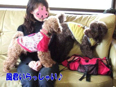 blog20060314b.jpg