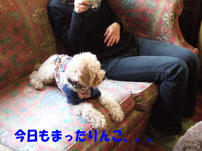 blog20060314h.jpg