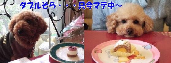 blog20060417g.jpg