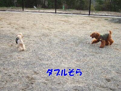 blog20060417j.jpg