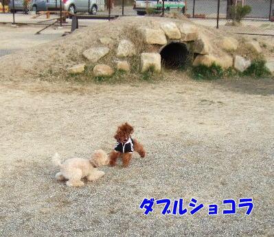 blog20060417k.jpg