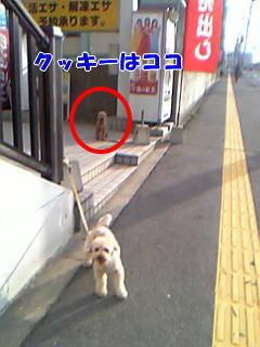 blog20060425g.jpg