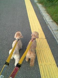 blog20060425h.jpg