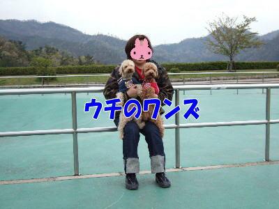 blog20060426d.jpg