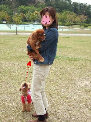 blog20060426i.jpg