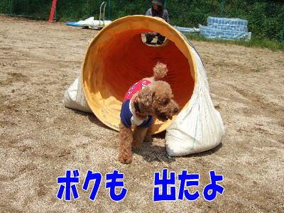 blog20060524e.jpg