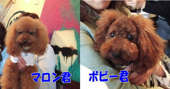 blog20060530d.jpg