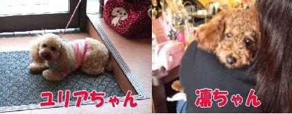 blog20060530e.jpg