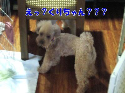 blog20060718a.jpg