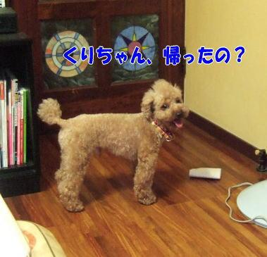 blog20060718j.jpg