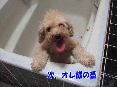 blog20060820e.jpg