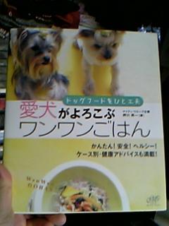 blog20061012a.jpg