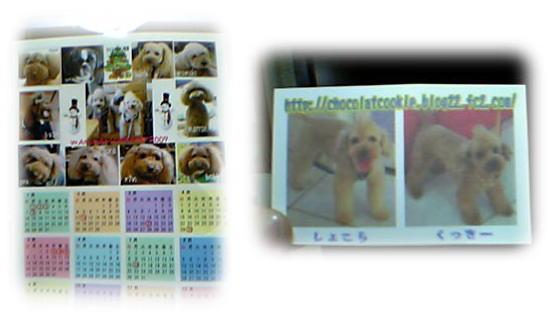 blog20061225h.jpg