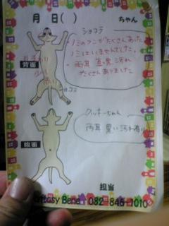 blog20070806b.jpg