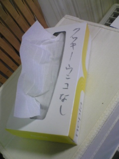blog20071222g.jpg