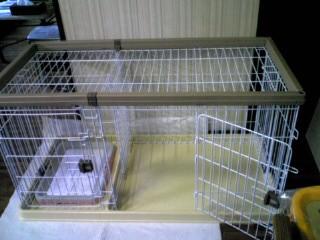 blog20080124c.jpg
