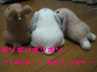 IMG_5966.jpg