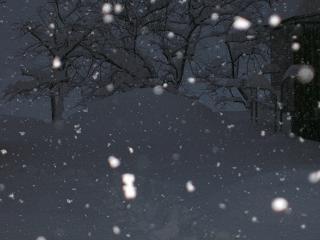 20100116雪