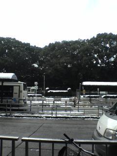 20051219124205