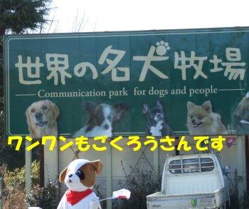 名犬牧場はこちら~