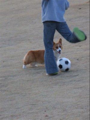 お姉ちゃんとサッカー