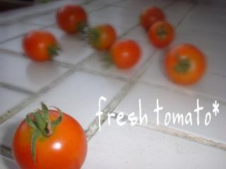 かわいいトマト*