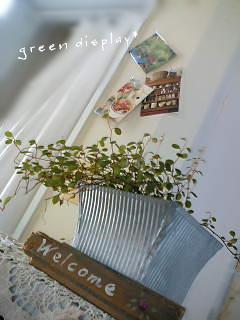 グリーン*